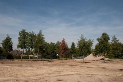 Lageweidjes-2010